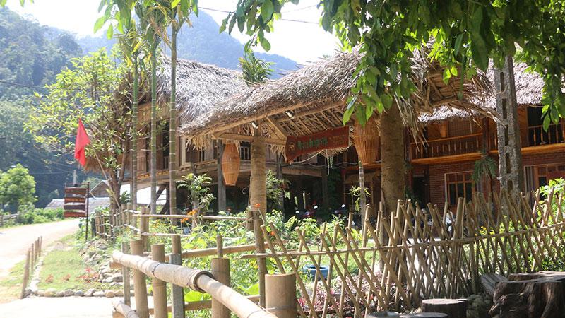 Areca Homestay, Tân Sơn, Phú Thọ